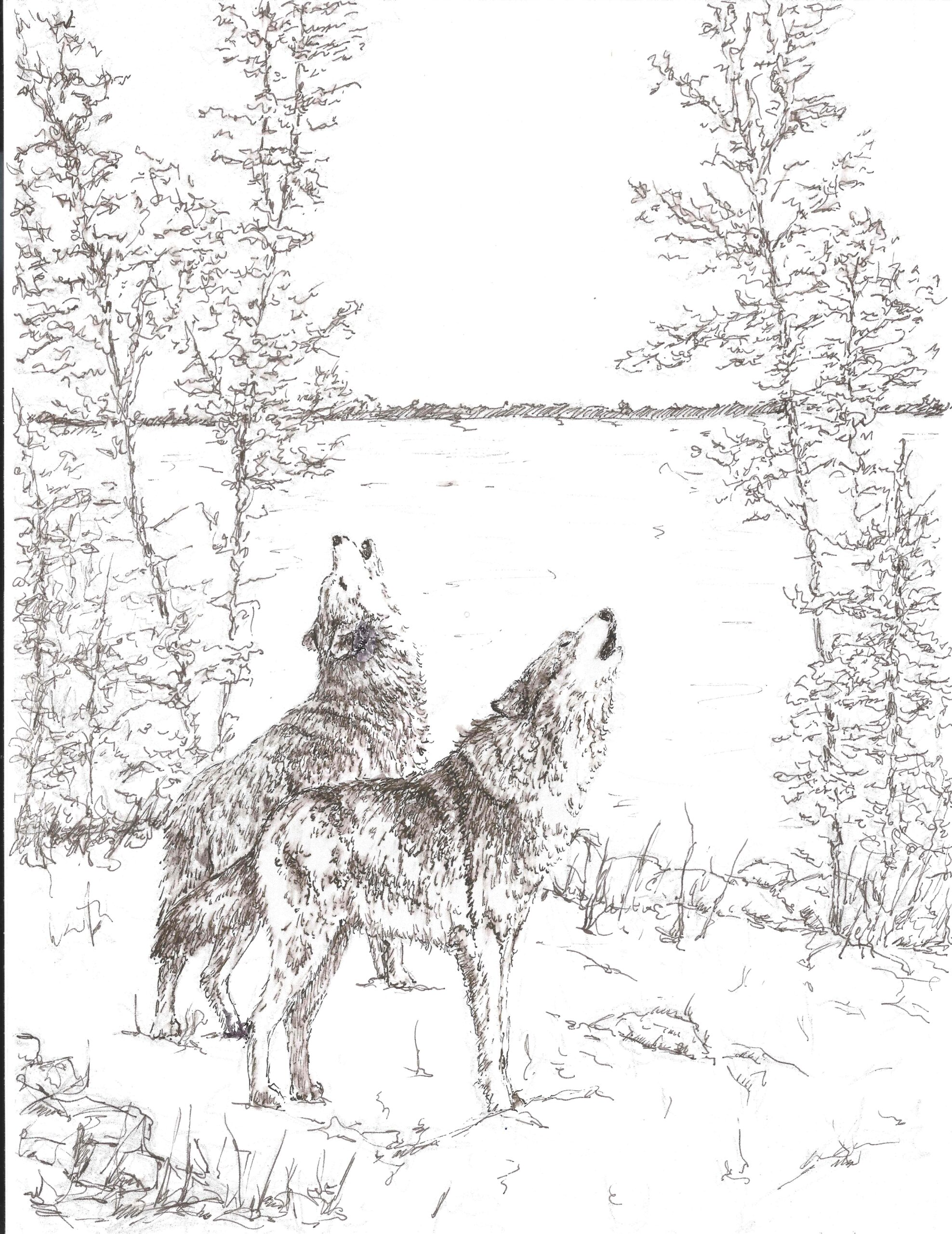 Timber wolves, sketch for wood carving