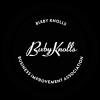 bk-bia-logo-transparent