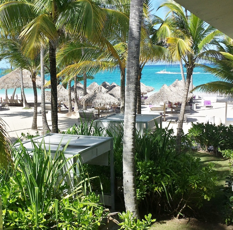 The Paradisus Resort