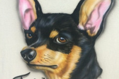AIR BRUSH FOR YOUR FUR FRIEND!