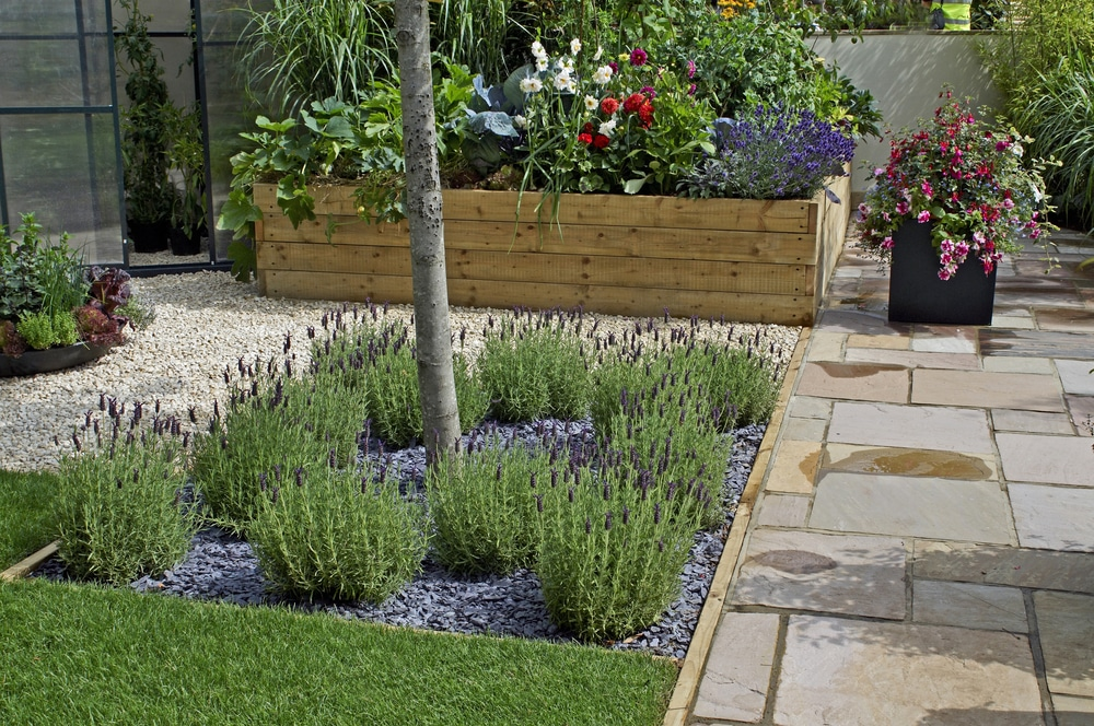 terrace garden with raised beds and container