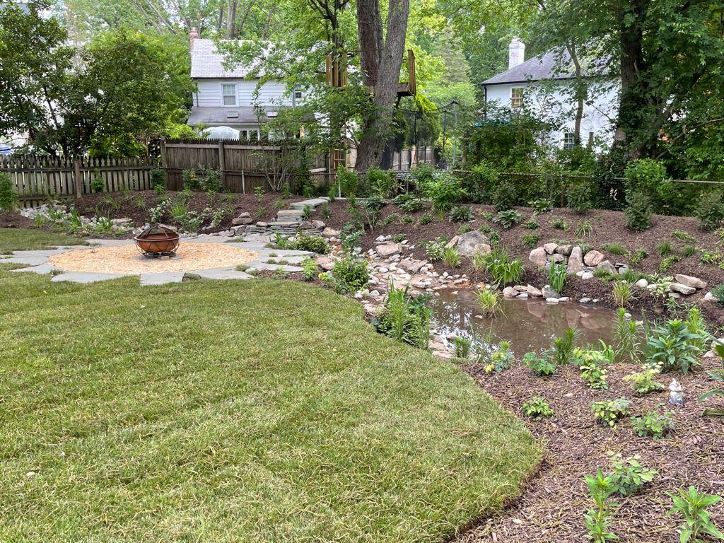 rain garden in Chevy Chase, MD, USA