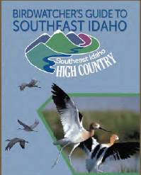 Birdwatcher's Guide to Southeast Idaho Brochure