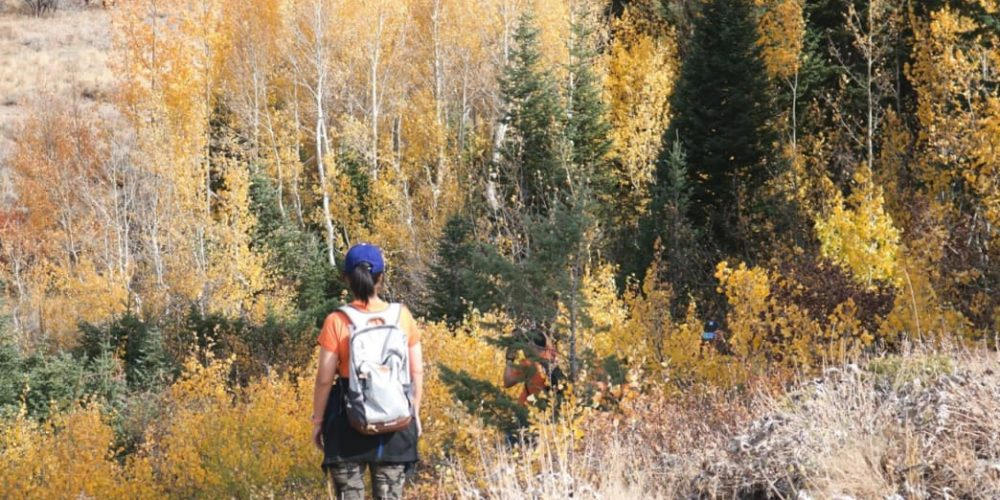 8 Beautiful Fall Hikes in the Bear Lake Valley