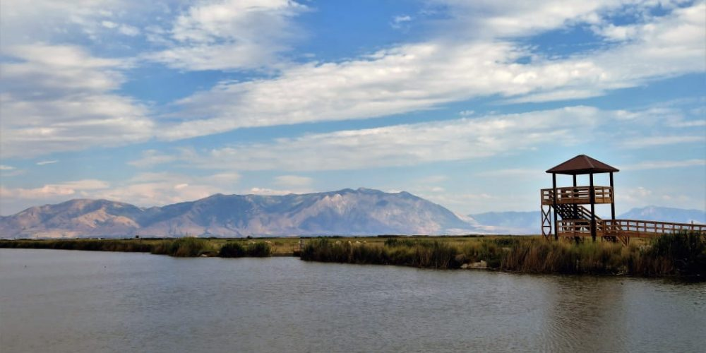 An Insider's Guide to Bear Lake National Wildlife Refuge