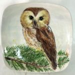 9E Mary Erler Northern Saw-Whet Owl