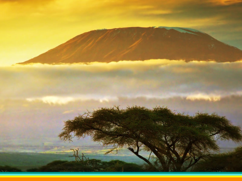 kenya travel specialist