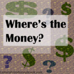 Do You Still Have Confidence in the CPA Who Reported Revenue as Profit?