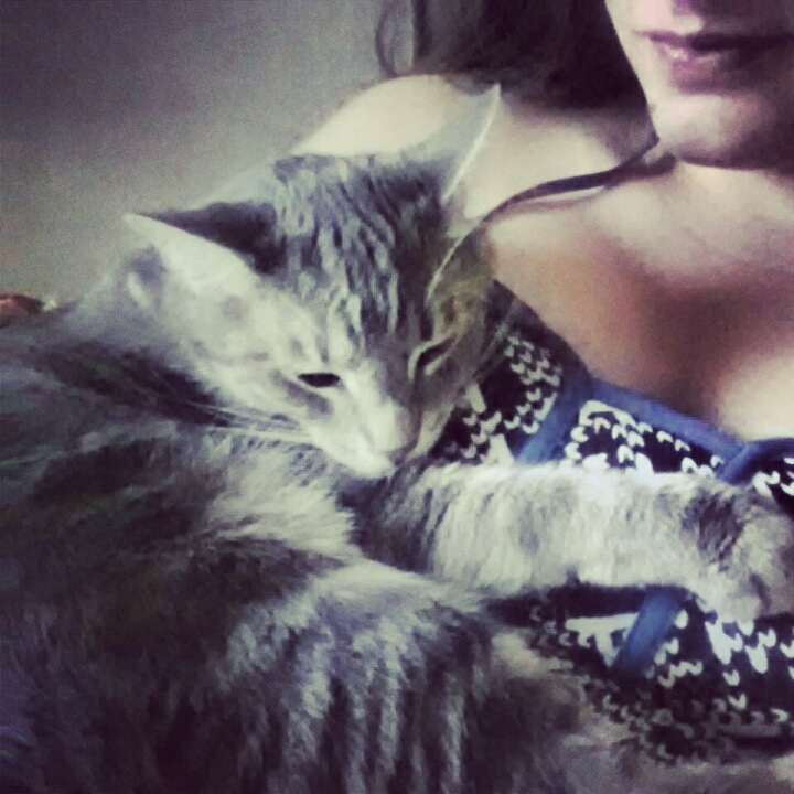 Malia May Johnson Wearing Sexy Camisole Nightgown Showing Cleavage Holding Johnson Family Pet Penny Lane The Cat