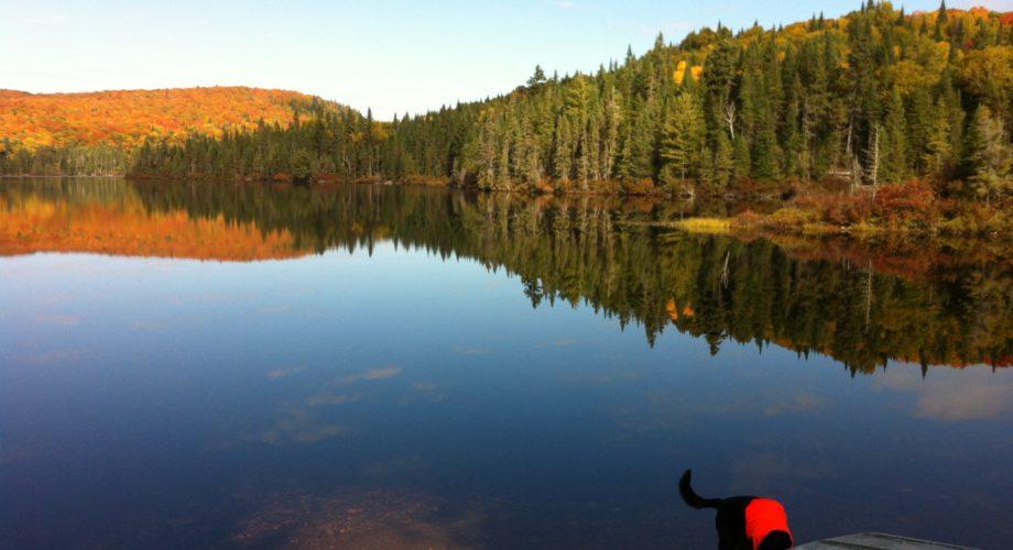 Pourvoirie, vent de la savane, Lanaudière, chalet, pêche, chasse, fishing, hunting, Quebec