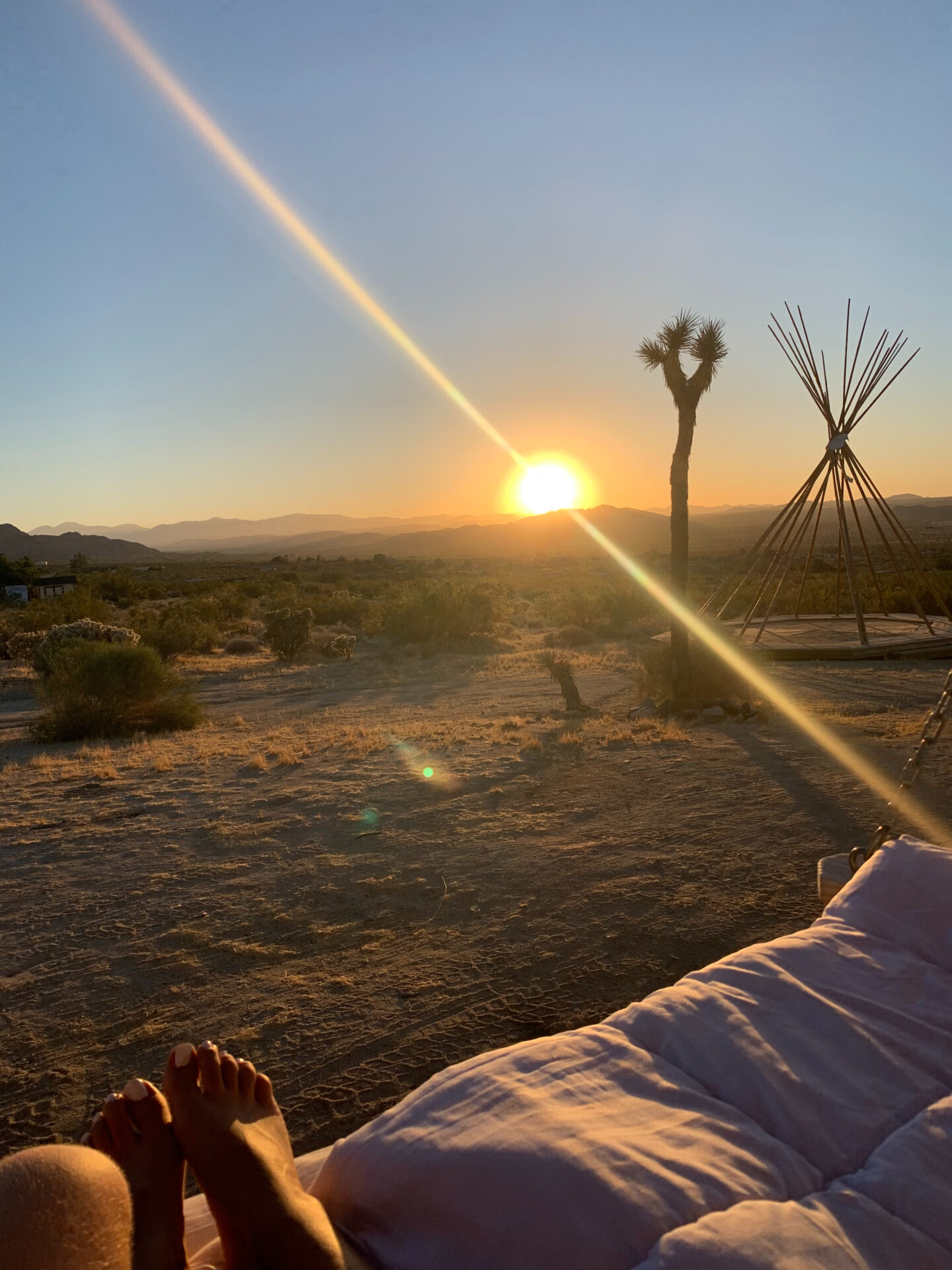 Alexis Alcala shares her travel experience in joshua tree