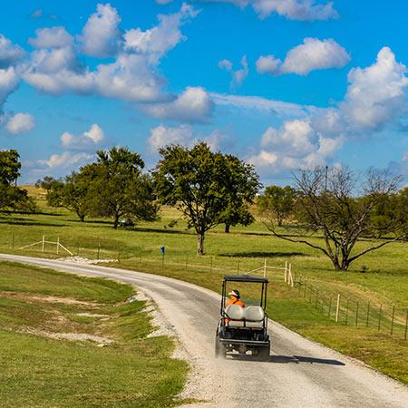 Free Golf Cart Ranch Rides