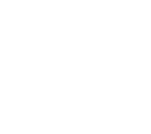 birm-logo-white