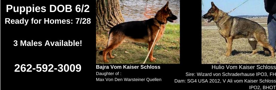 Bajra-Vom-Kaiser-Schloss-x-Hulio-vom-Kaiser-Schloss