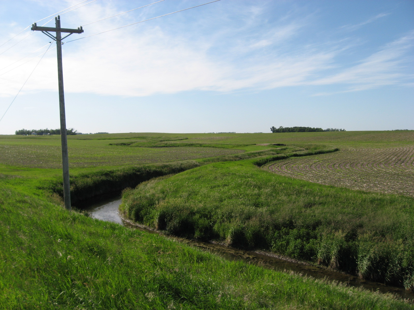 Clean Water Action's Campaign to Clean Up Minnesota's Corporate Agriculture