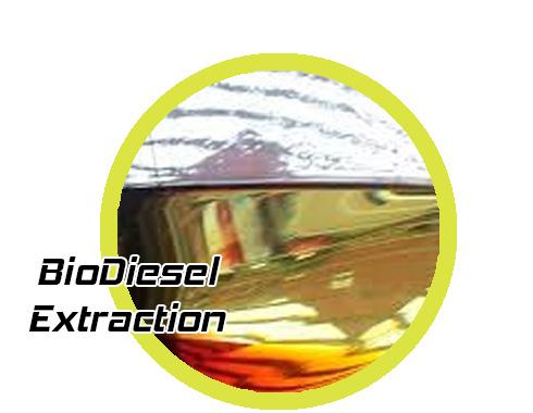 biodiesel_grid