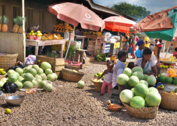 The economic shock caused by the coronavirus is set to linger on despite partial ease of restrictions by the President