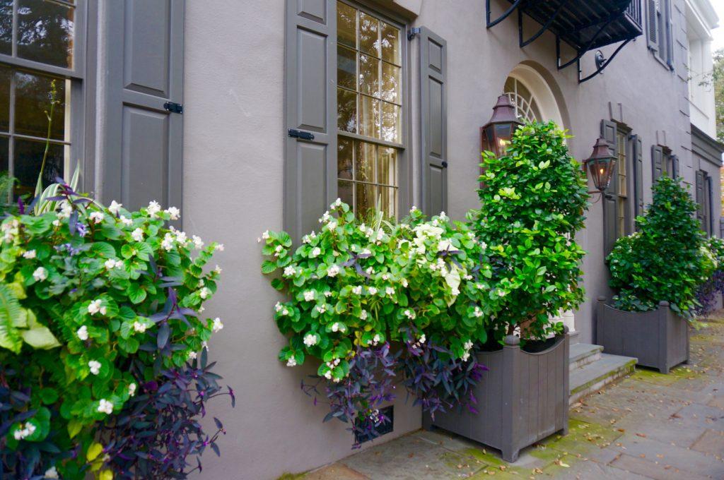 ladyhattan luxury travel blog charleston south carolina christmas decor tara moss photography