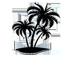 Palm tree on Sand Bar