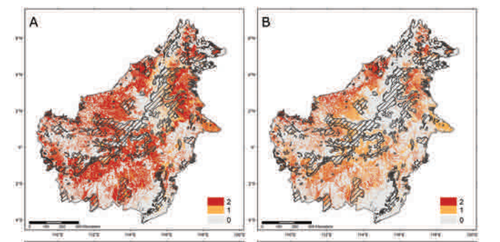 Carnivore conservation planning on Borneo: identifying key carnivore landscapes, research priorities and conservation interventions
