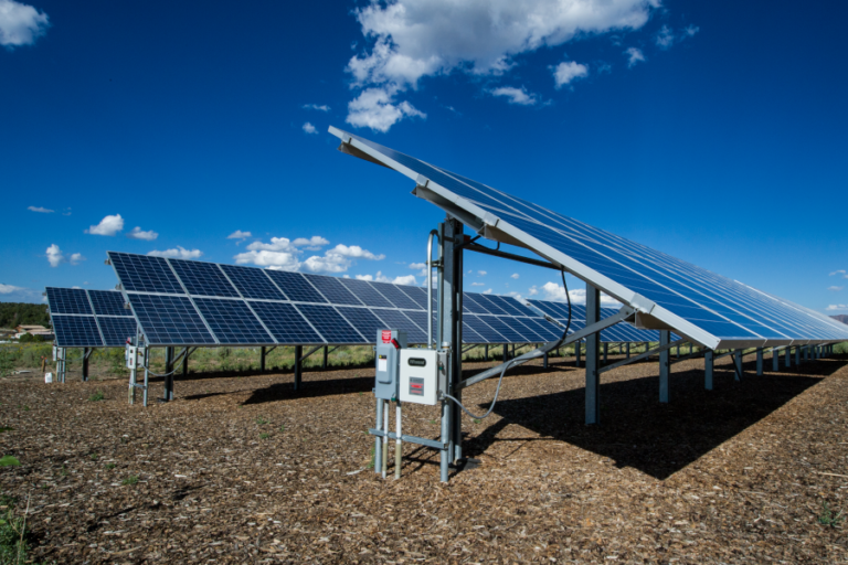 Bird use of solar photovoltaic installations at US airports: Implications for aviation safety