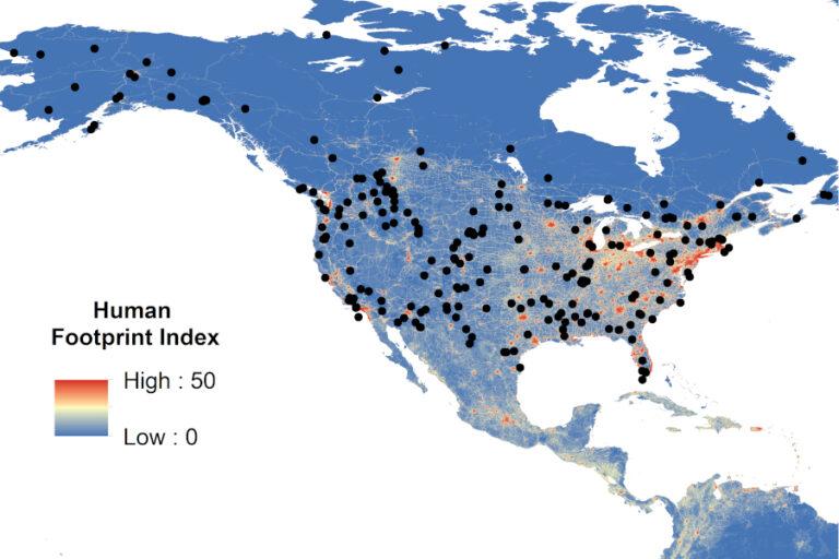 Cause‐specific mortality of the world's terrestrial vertebrates