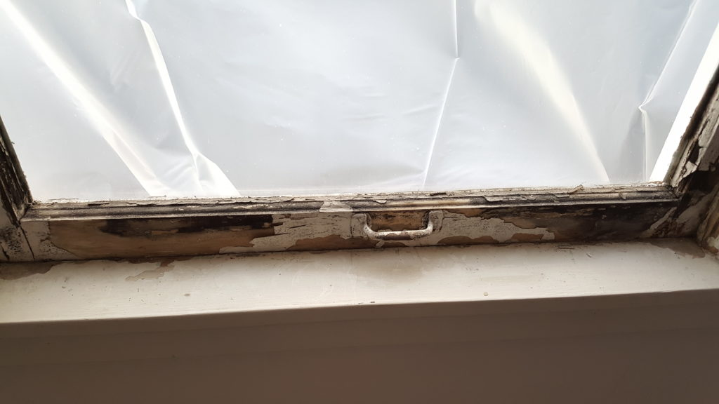 flaking paint and bare wood on lower sash