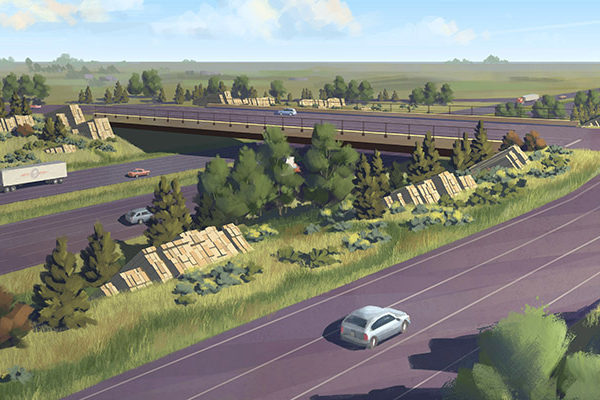 I25 and Mulberry Interchange 1