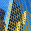 oct-assigned-bwindows-and-doors_city-windows_carol-gaffney_honorable-mention_20161024