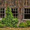 oct-assigned-salonwindows-and-doors_broken-windows_ron-denk_top-award_20161024
