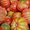 March Assigned BMacro and Closeup_tomatoes_Carol Gaffney_Honorable Mention_20170327