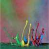 March Assigned SalonMacro and Closeup_Paint drops_Ben Venezio_Image of the Month_20170327