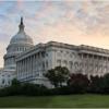Sunrise on Capitol Hill_Ellen Stein_Assigned A Americana_Equal Merit
