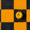 Check Mate_Stephanie Gamba_Assigned A Textures & Patterns_Equal Merit