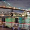 Two Bridges_Darryl Napoleon_Assigned B Bridges_Honorable Mention