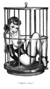 cage bdsm