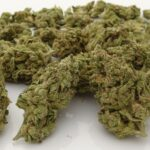 Union Electric Cannabis Has Fire By The Ounce!