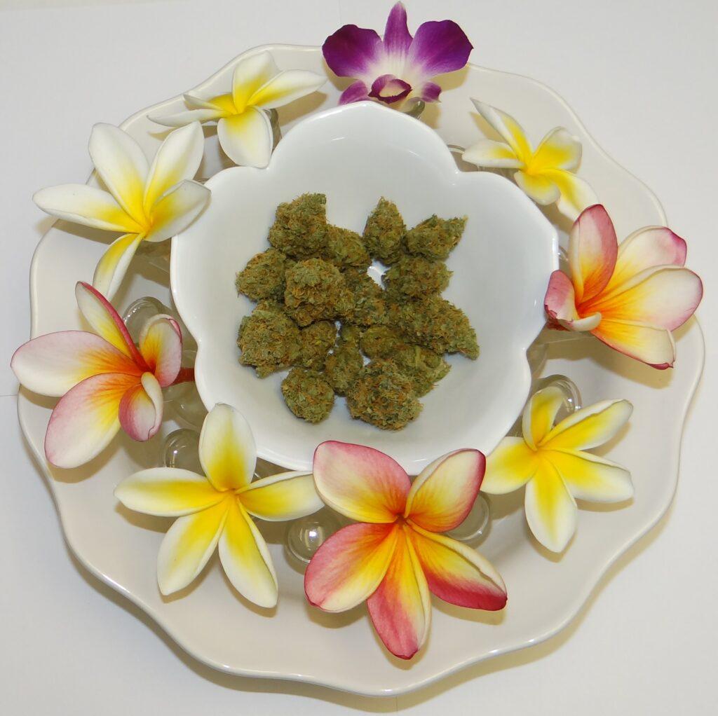 Cannabis and plumerias