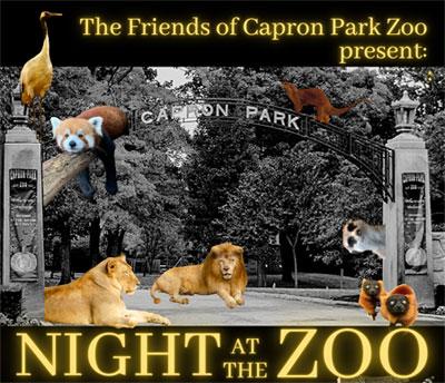 Night-at-the-Zoo