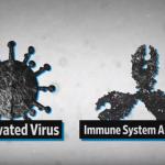 [국제] WHO, 우한 폐렴 코로나바이러스 국제과학협회가 집중 연구