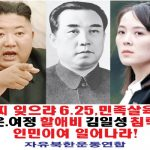 자유북한운동연합, 풍선 20개에 대북전단 50만장 살포