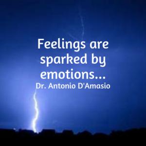 feelings emotions antonio damosio