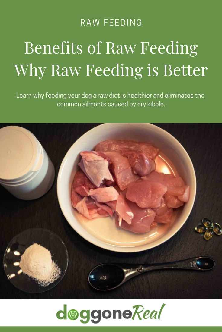 Benefits of Raw Dog Food - Why Raw Feeding is Better