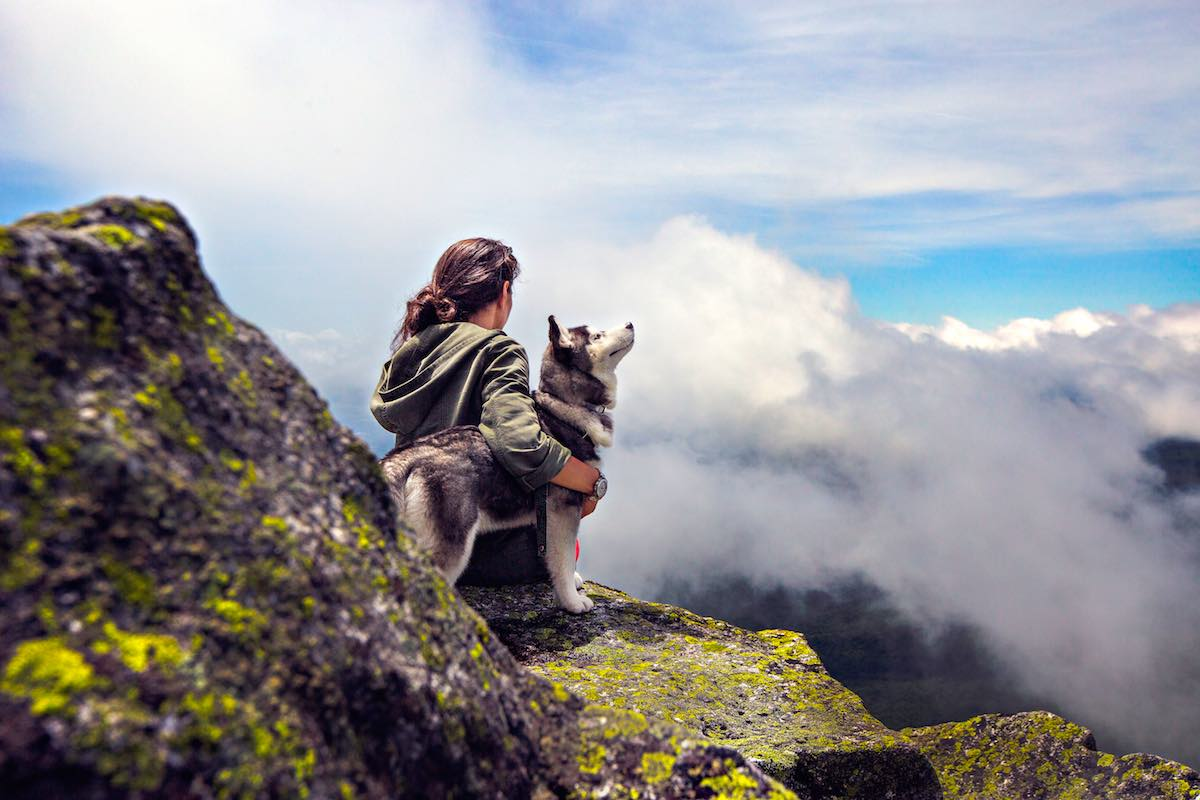 husky dog with girl on top of mountain with clouds