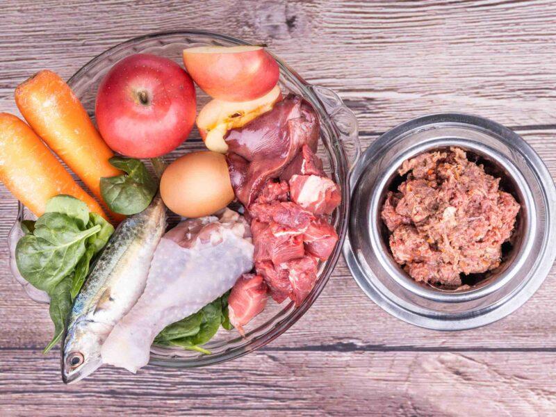 Barf vs Prey Model of Raw Feeding