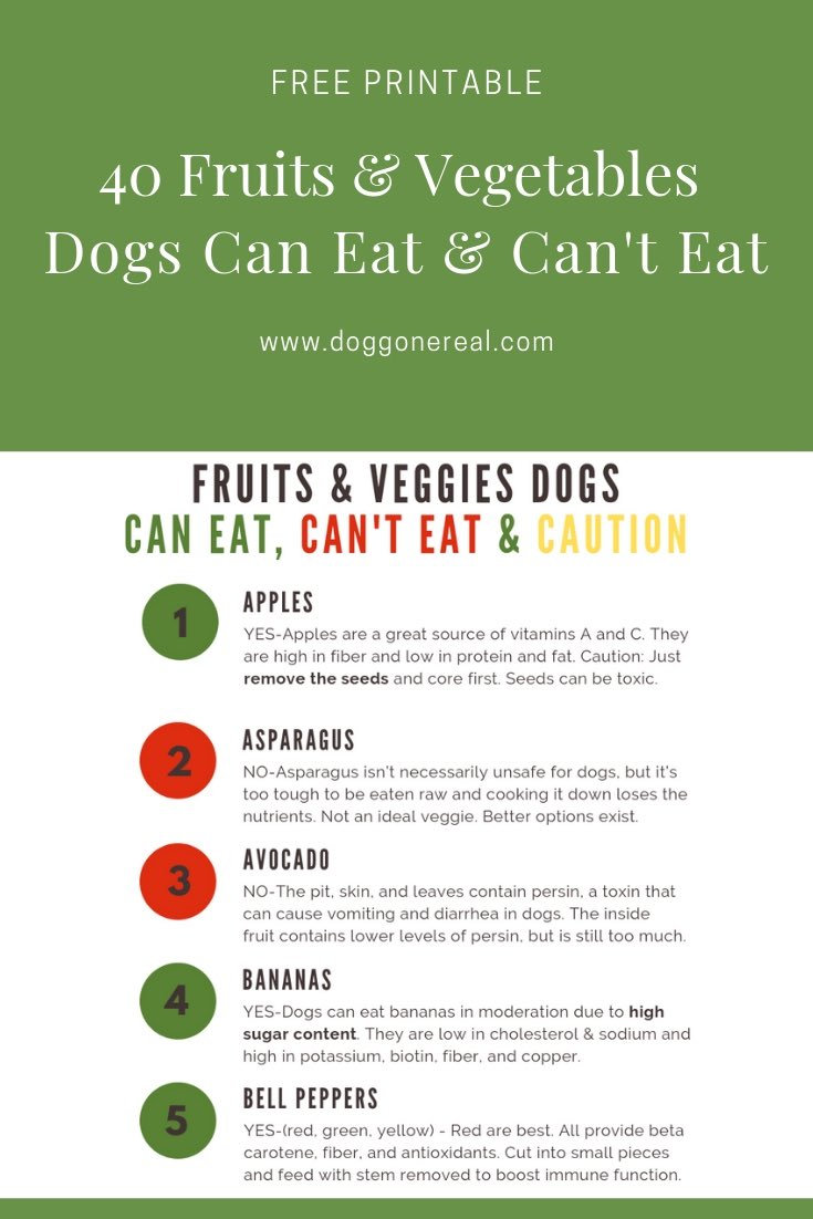 Fruits and vegetables dogs can eat and can't eat