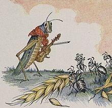 grasshopper fiddler