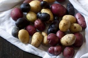 curry-potato-salad1-800