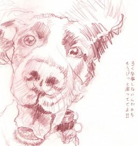 eye-of-the-dog-283x300