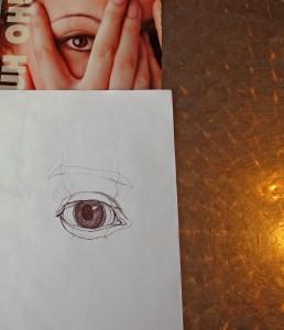 eyebrows, men and women